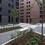 Bagot Street private courtyard